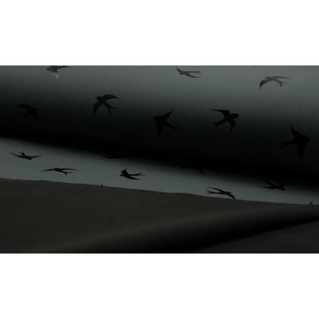 Softshell Bird - schwarz/metallic