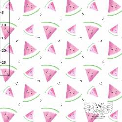 Baumwolljersey - Watermelon Wassermelone