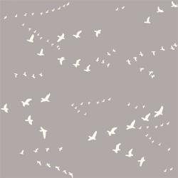 Birch Bio-Baumwolljersey - Vögel - grau